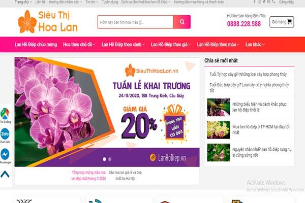 Trang website: sieuthihoalan.vn